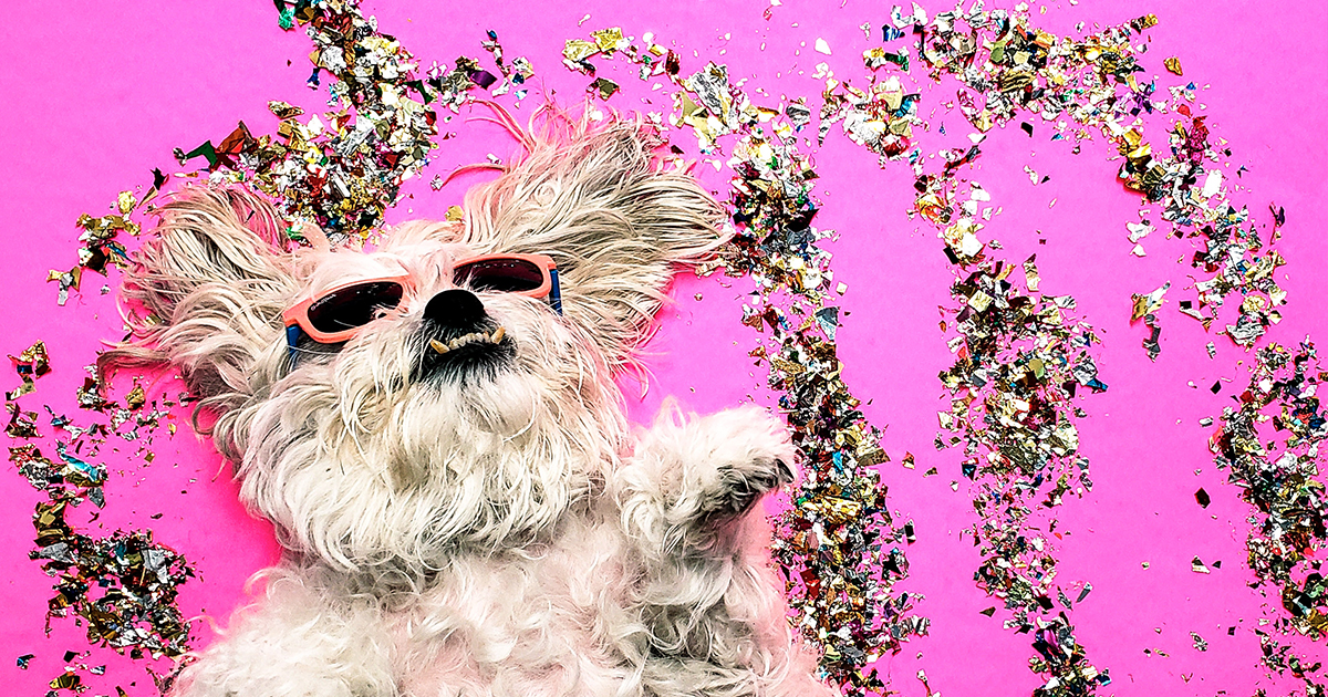 sole occhiali pazzi modena reggio emilia correggio carpi ottica optometria righetti
